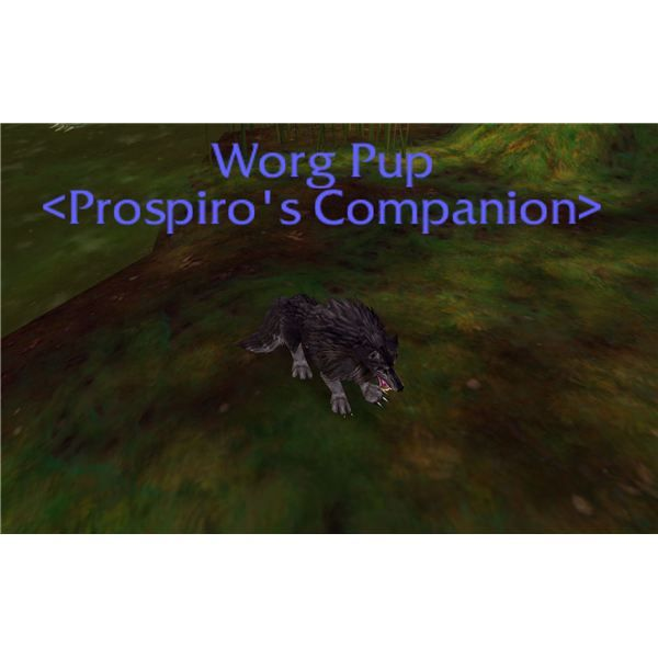 Guide To World Of Warcraft Companion Vanity Pets Available As