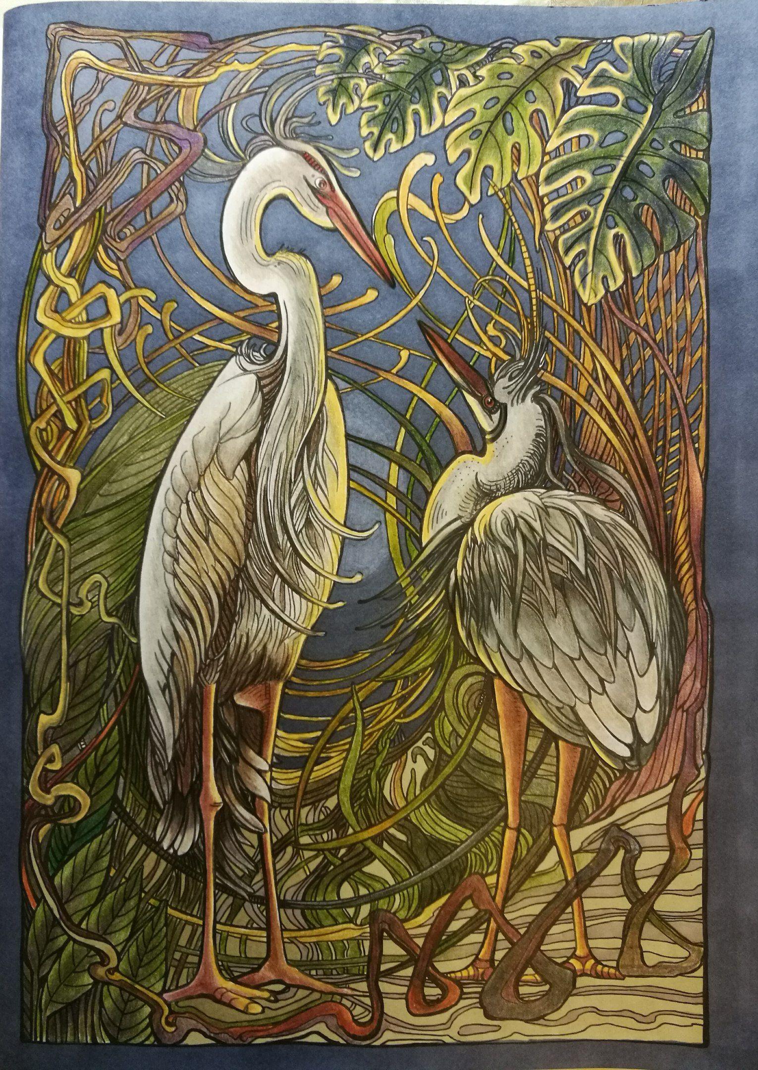 Мания Ботаника | Irina Vinnik's Coloring Books | Раскраски ...