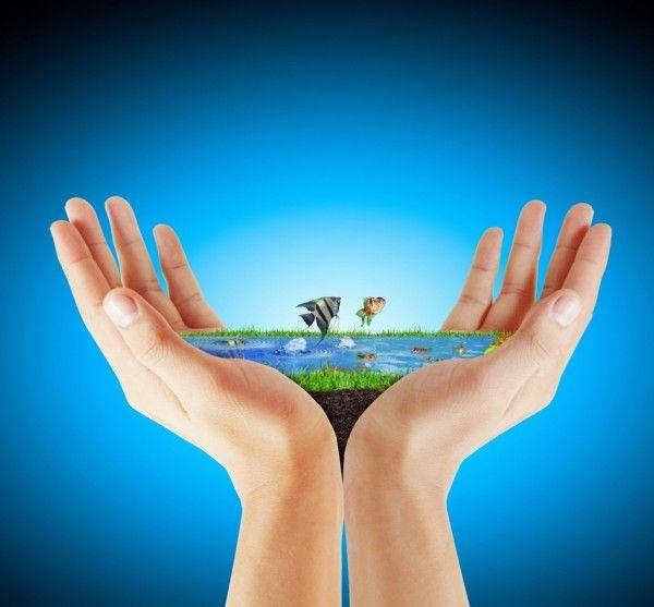 نتيجة بحث الصور عن شعارات الحفاظ على البيئة Photo Stock Photos English Lessons
