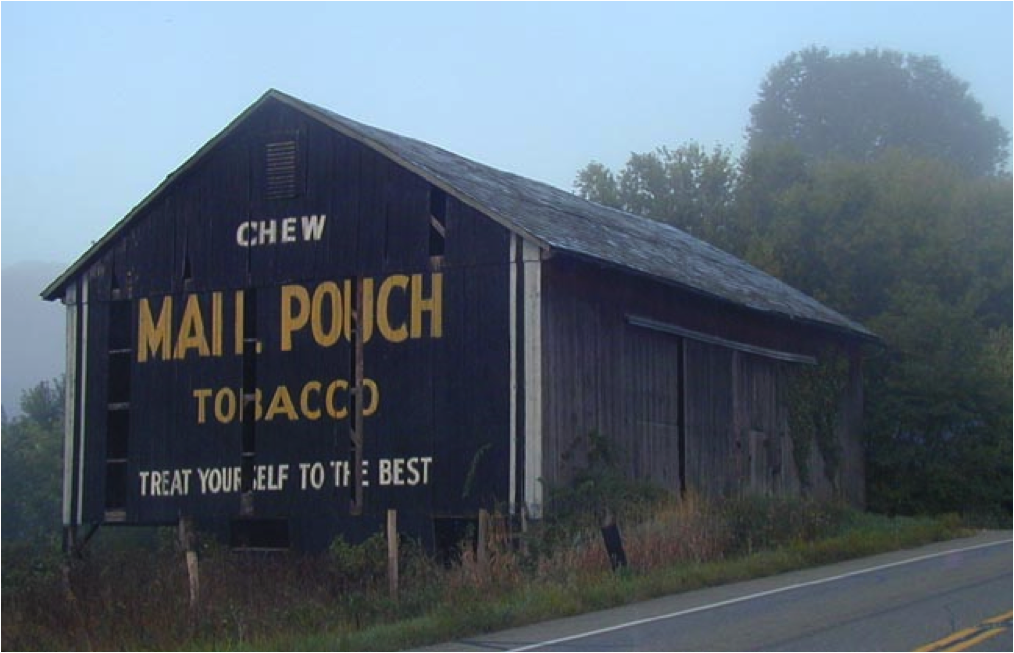 Unlike sweetened chewing tobacco, Mail Pouch was pure leaf tobacco. Why is this important? Because it doesn't juice up in your mouth, which means you don't have to spit as often.