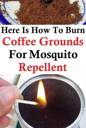 Here Is How To Burn Coffee Grounds For Mosquito Repellent
