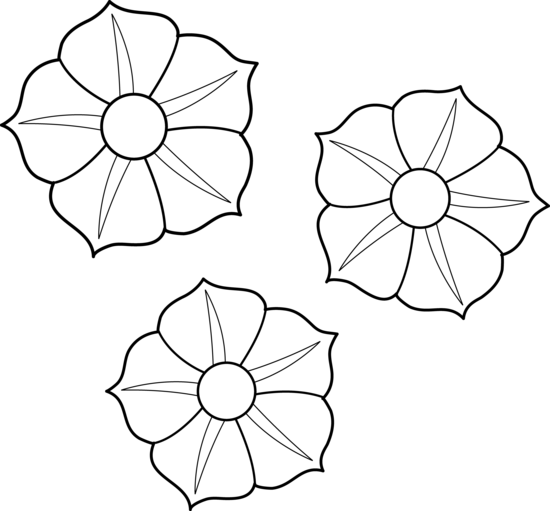 Flower Child Line Drawing : Flower outline for coloring colorable petunia flowers