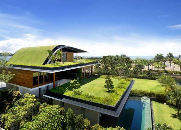 Grunes Dach Gute Isolierung Und Nachhaltigkeit Moderne Hauser Bauen Architektur Moderne Architektur