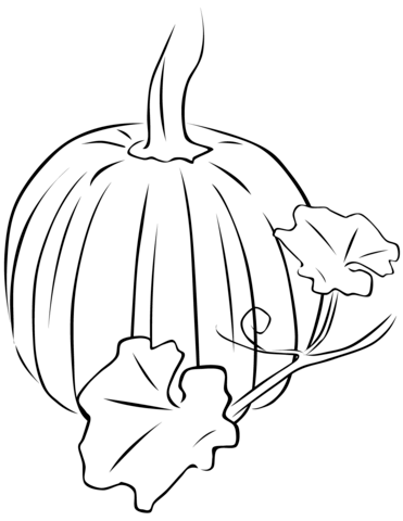 Pumpkin And Leaves Coloring Pages Portraits