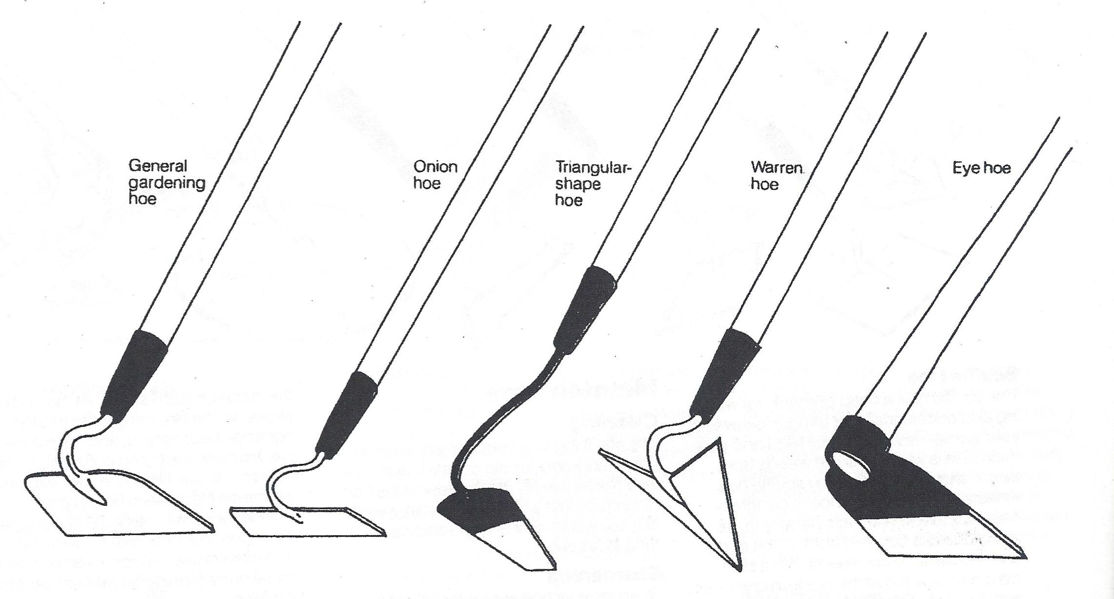 Types Of Garden Hoes