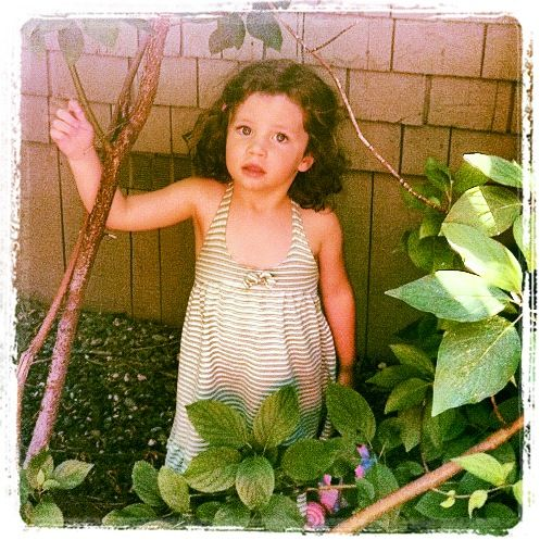Cora-3yr old