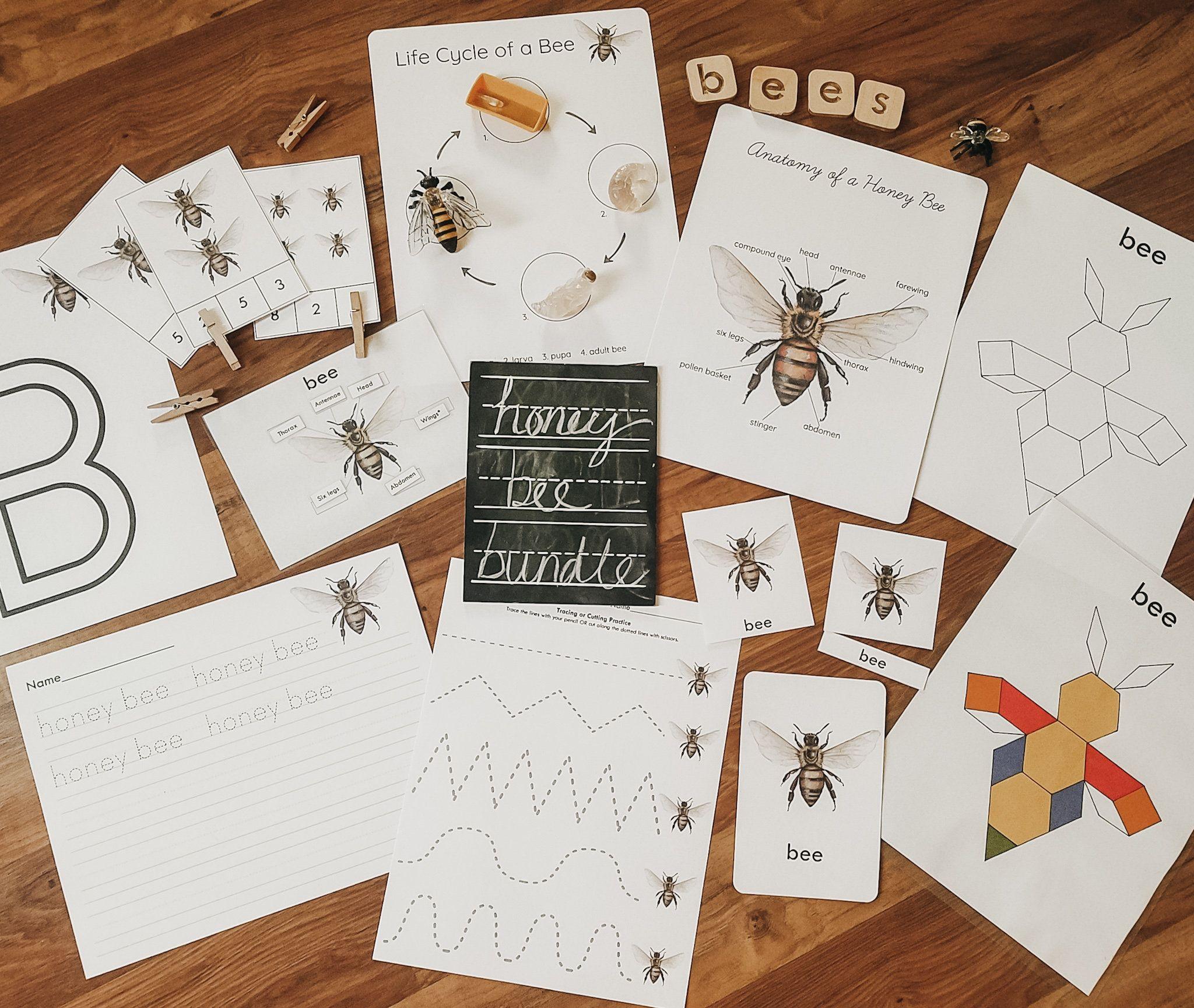 Honey Bee Bundle Printable Digital Download