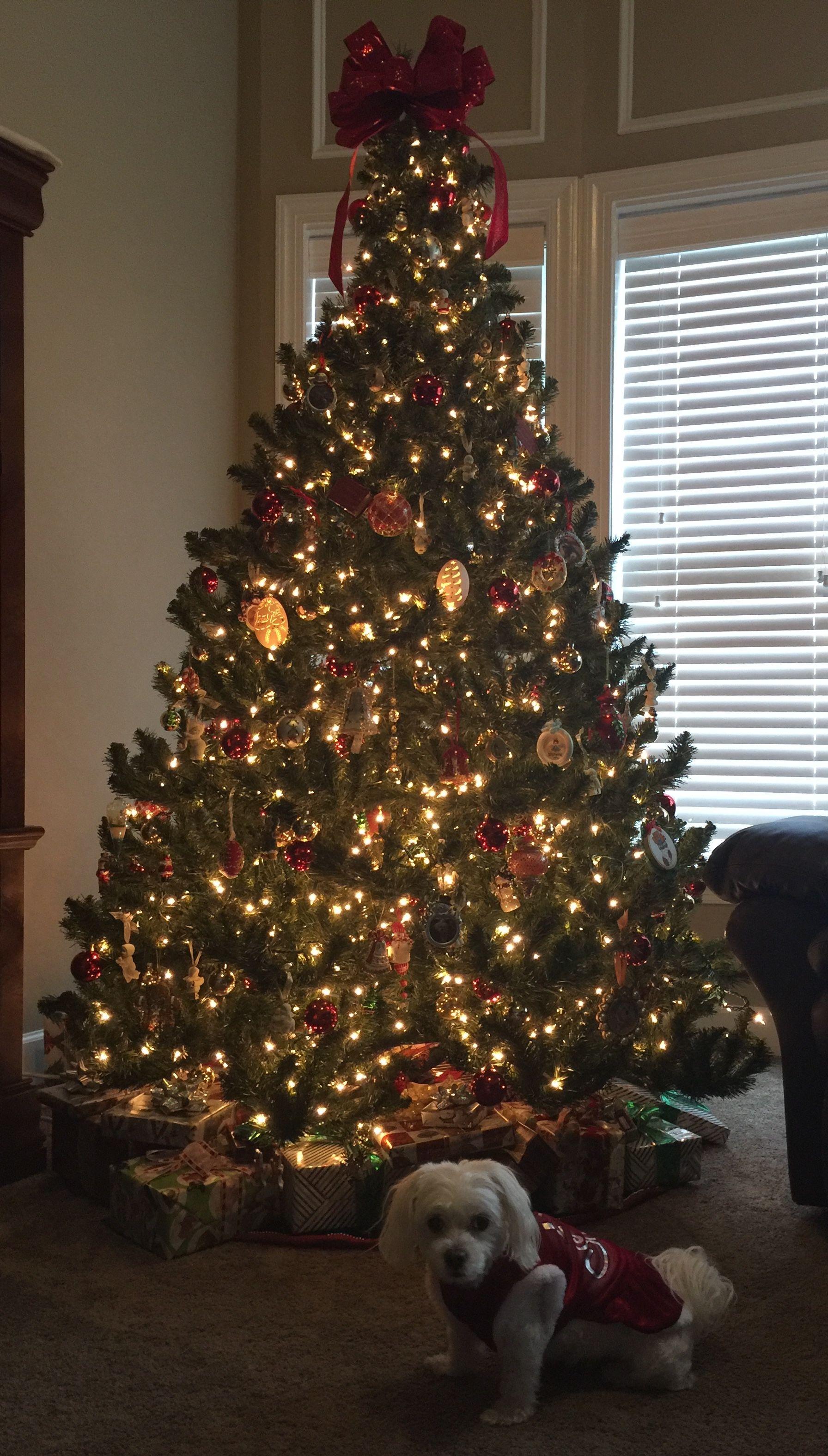 Pin by Stephanie Sandlin on Dogs | Christmas tree, Merry ...