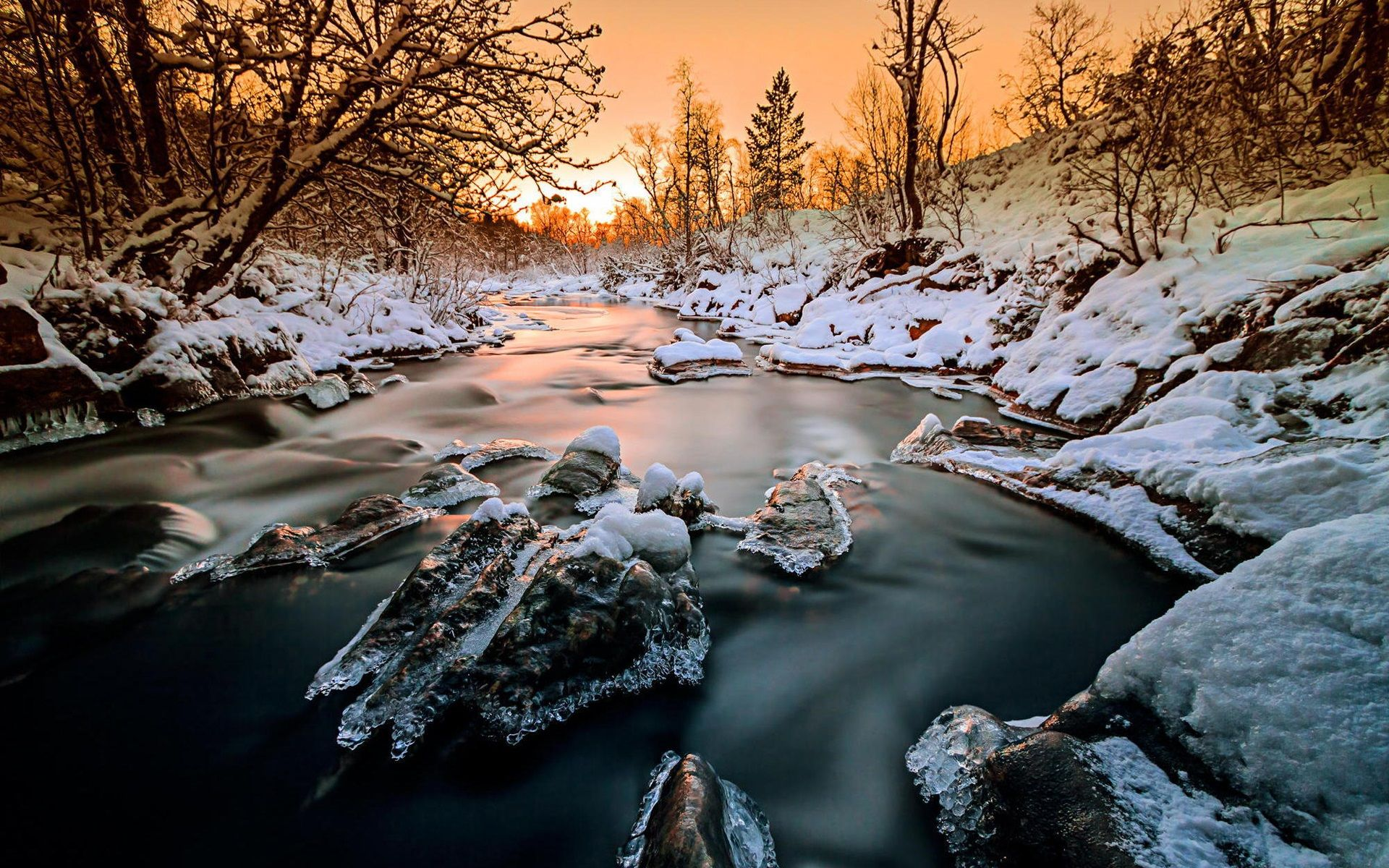 Norvège, forêt, arbres, rivière, neige, glace, hiver