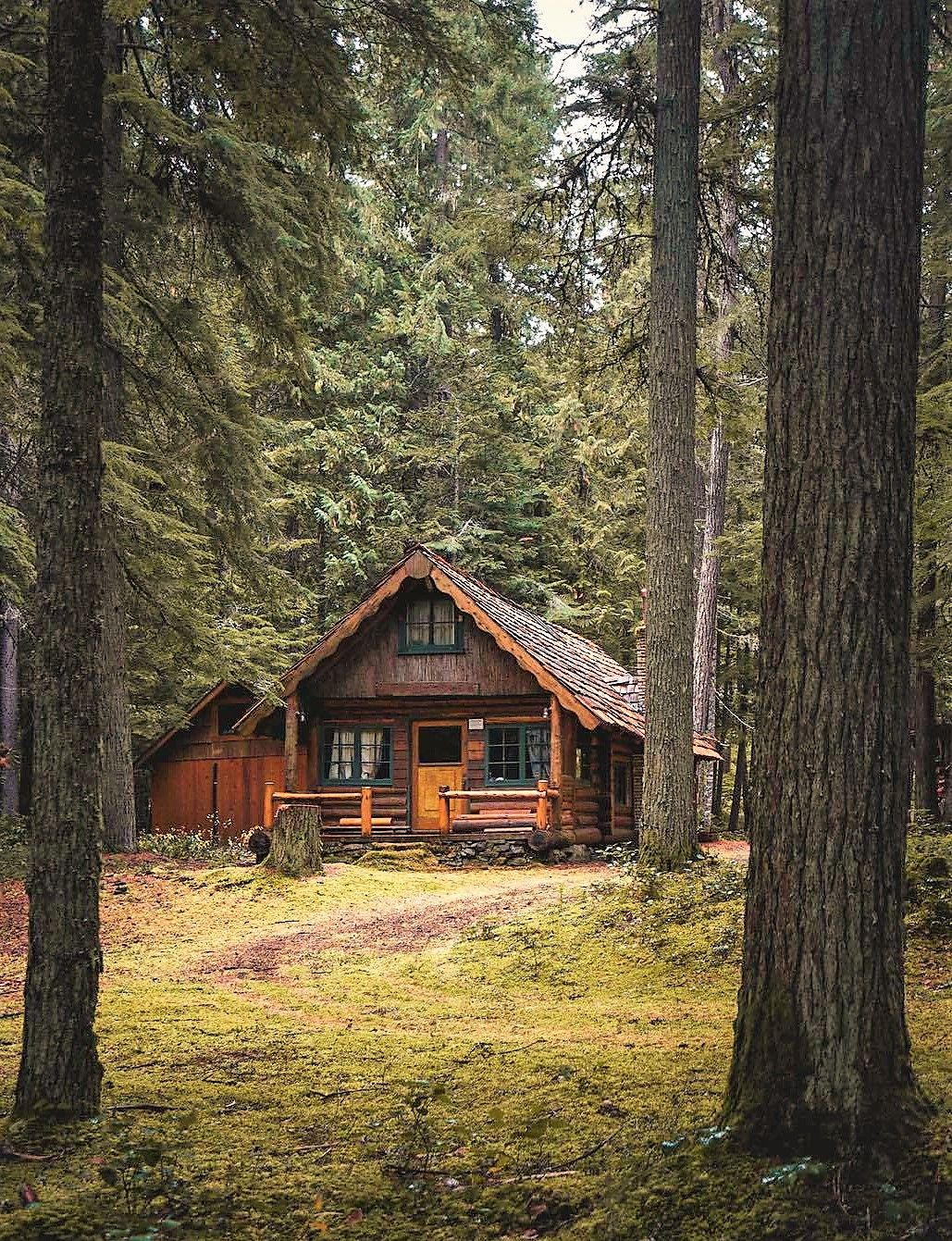 Pin By Zaib Muavia On Cabins In 2020 Log Cabin Homes Cabin Homes Log Homes