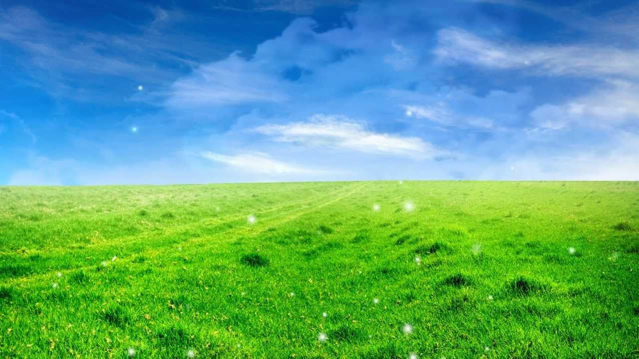Natural Beautiful Background Easyworship Loop Beautiful Backgrounds Field Wallpaper Blue Sky Wallpaper