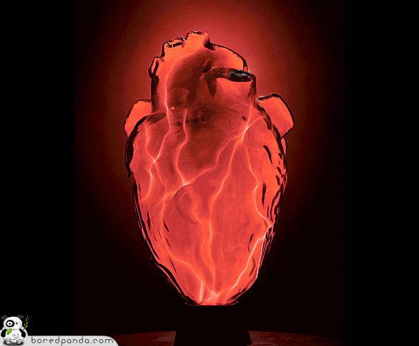Anatomy inspired lighting the mini heart electra lamp is anatomically correct and both gruesome and cool switched off it just looks like an anatomically