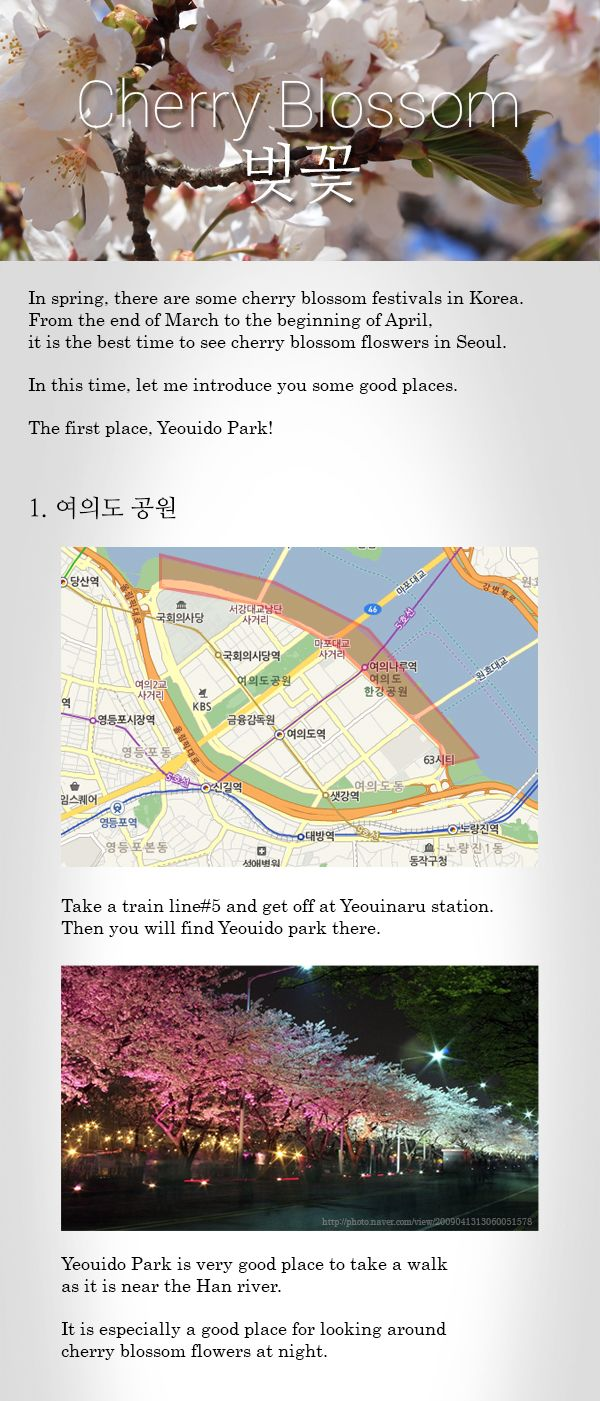 Korean Cherry Blossom Festivel Contents By Http Www Innocontents Com How To Pronounce Real Korean