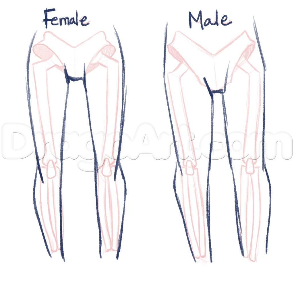 Related image   Ref3   Pinterest   Drawings, Anatomy and Tutorials