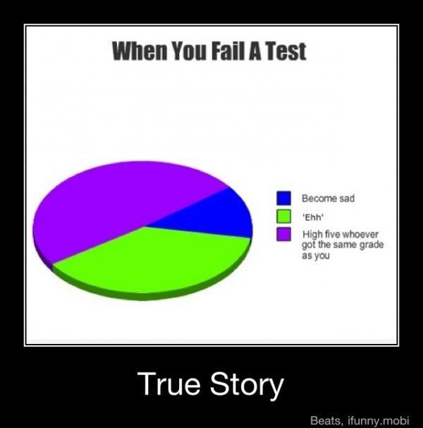 True Story Funny Charts Really Funny Memes Funny Pie Charts