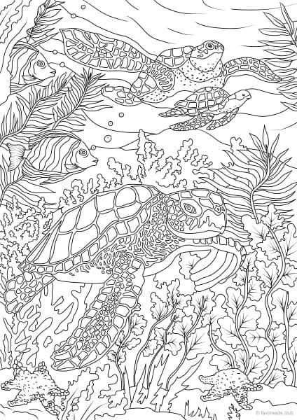 Ocean Life Turtles Turtle Coloring Pages Printable Adult