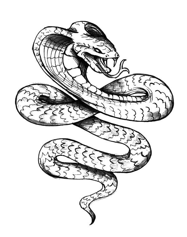 king cobra king cobra tattoo coloring pages