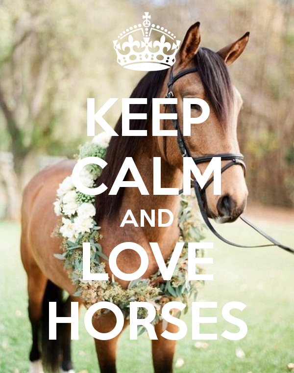39 keep calm and love horses 39 poster pferde spr che. Black Bedroom Furniture Sets. Home Design Ideas