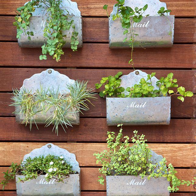 Urban Farming: Growing a Garden in Small Spaces | Small spaces ...