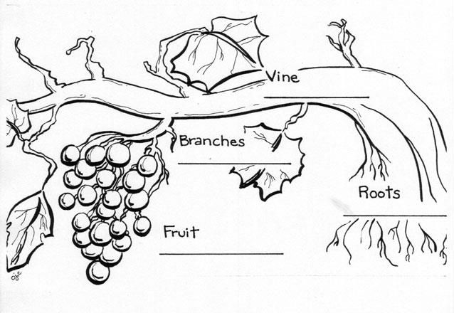 I am the vine...\