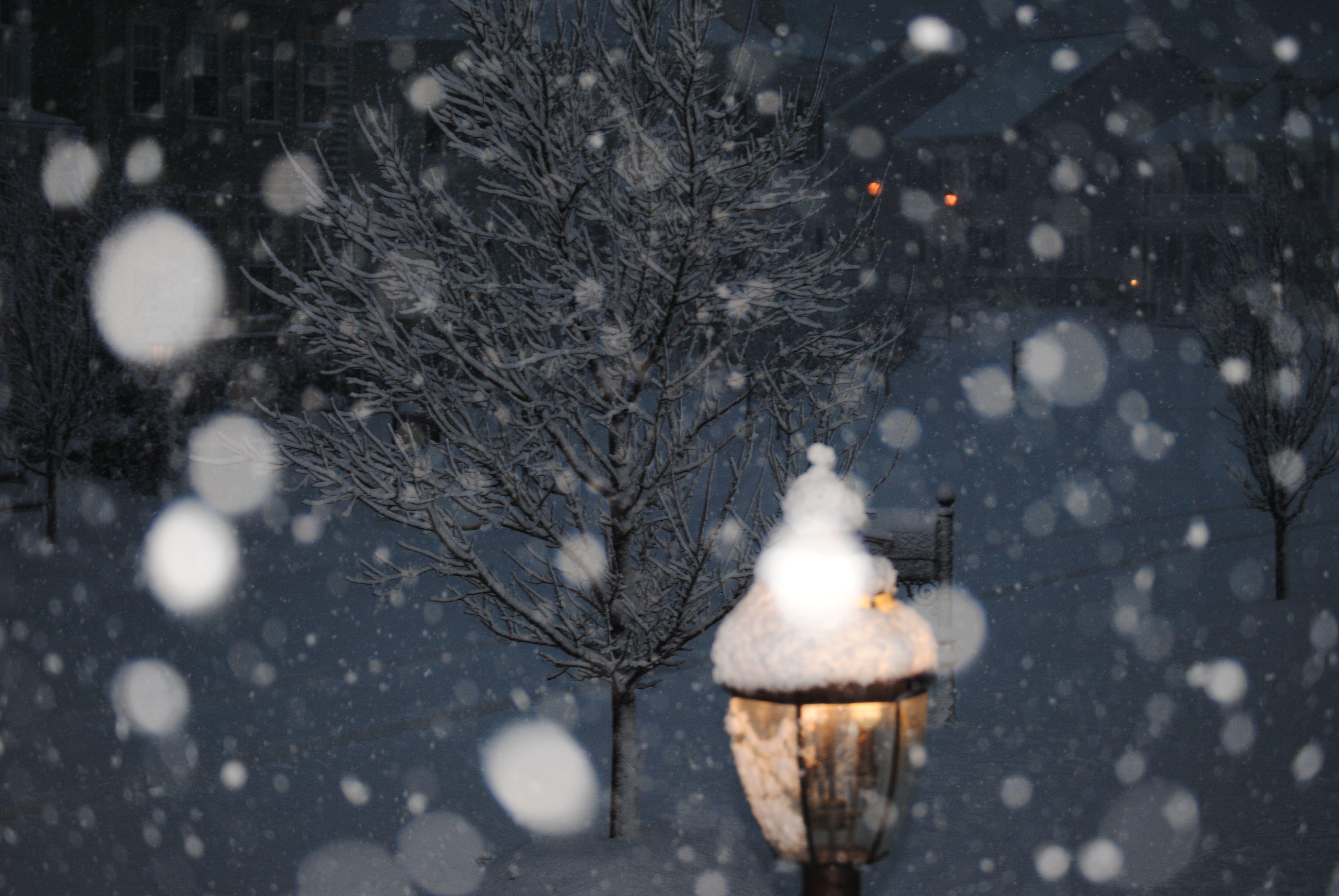 Snow fall at ni...
