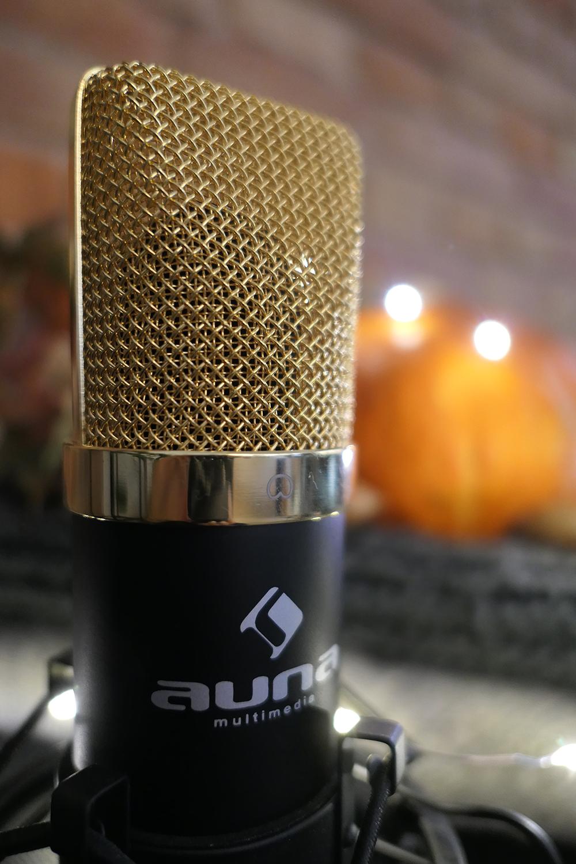 Das Studio Mikrofon MIC900B ist für jede Art von Gesangs