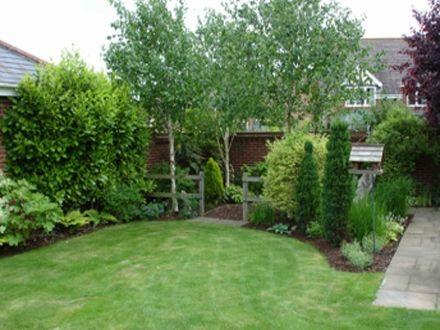 883e73da88f310da1c0e7f956abfaf23 - Best Screening Trees For Small Gardens