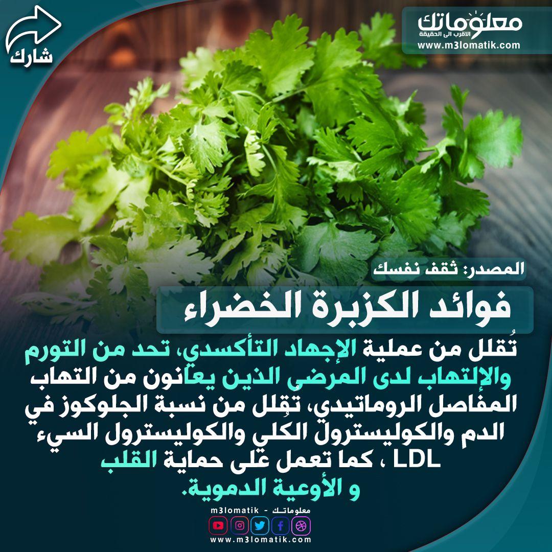 فوائد الكزبرة الخضراء Herbs Food Parsley