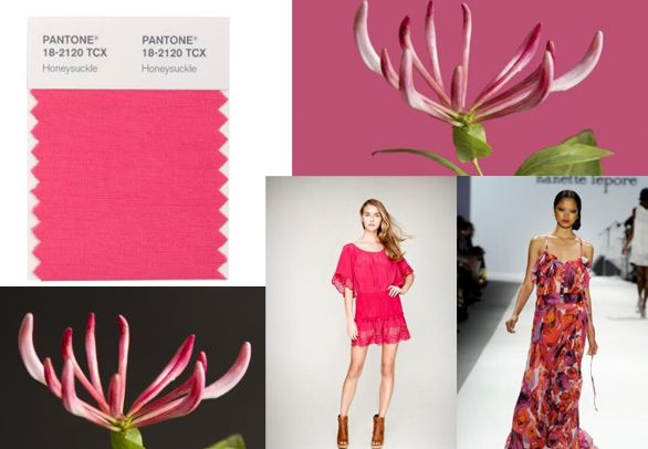 Honeysuckle 2011 Pantone color of the year