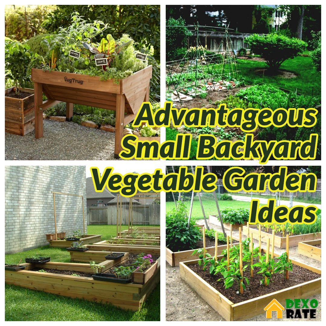 35 Advantageous Small Vegetable Garden Ideas For Your Backyard Dexorate Small Vegetable Gardens Backyard Vegetable Gardens Vegetable Garden Design