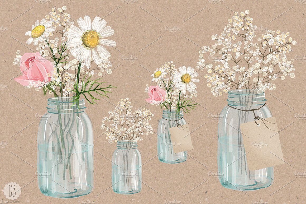 Watercolor Chamomile Baby Breath Jar Flower Illustration Flower Drawing Babys Breath