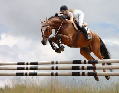 bc95f1674 Show jumping! Or Jumping horses in general. Hope to own a horse one ...