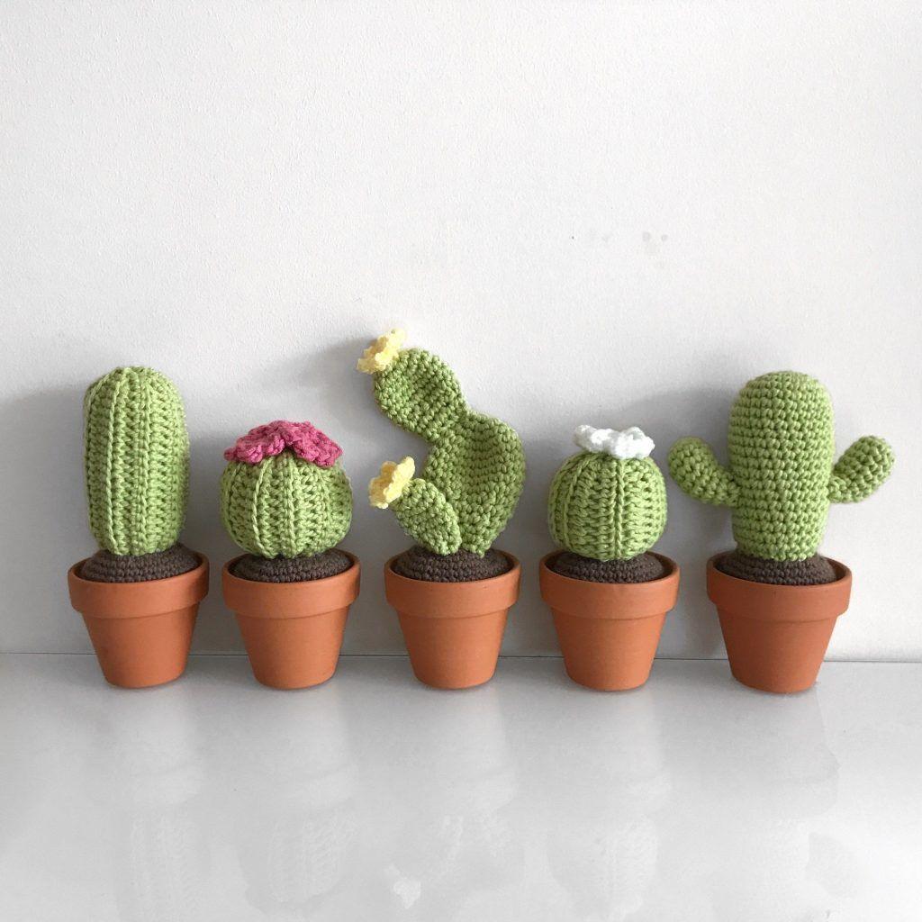 Pasos de como hacer cactus a crochet y otras plantas - Tejidos a crochet  paso a paso   1024x1024