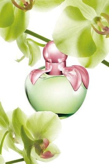 Love by Nina Ricci - notes of green Granny Smith apple, with a spring breath of aromas such as cherry blossom mixed with delicate almonds. Freshness is introduced by Frangipani flower.