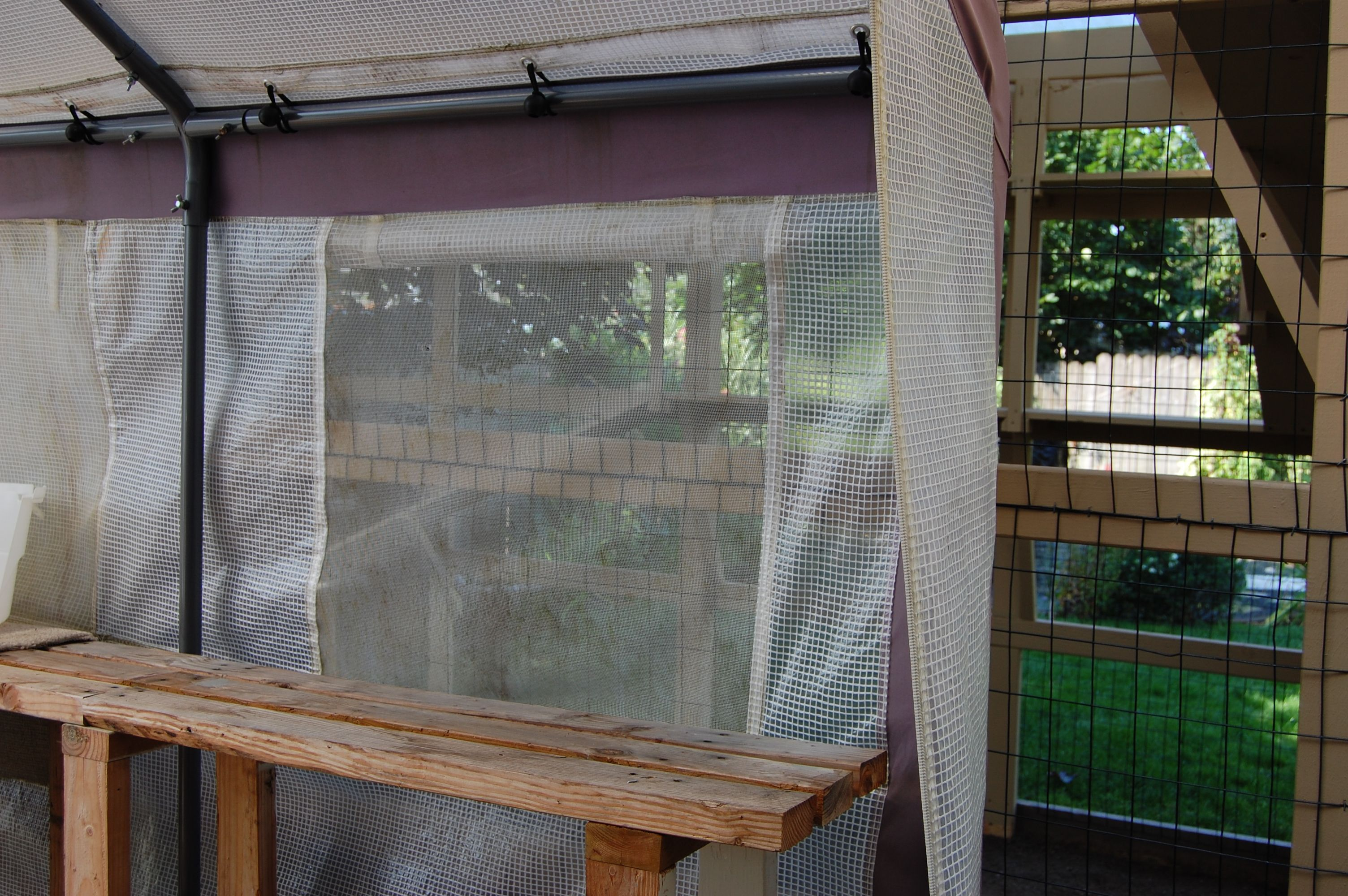 36 Best My Catio Images On Pinterest - Catio, Conservatory