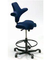 1173821 Chair Hag Capisco Armlss Bkrst Ocean Cash Ea Generic Product Cecs A152 Best Office Chairs Best Office Chair Chair Capisco Chair
