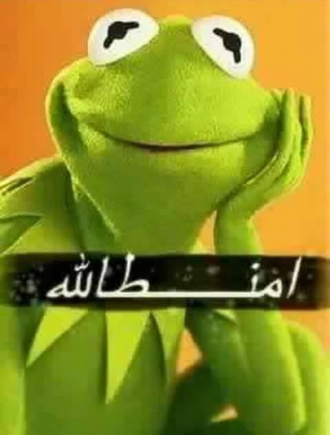 بشرى المجالي التميمي On Twitter Arabic Funny Mood Pics Funny