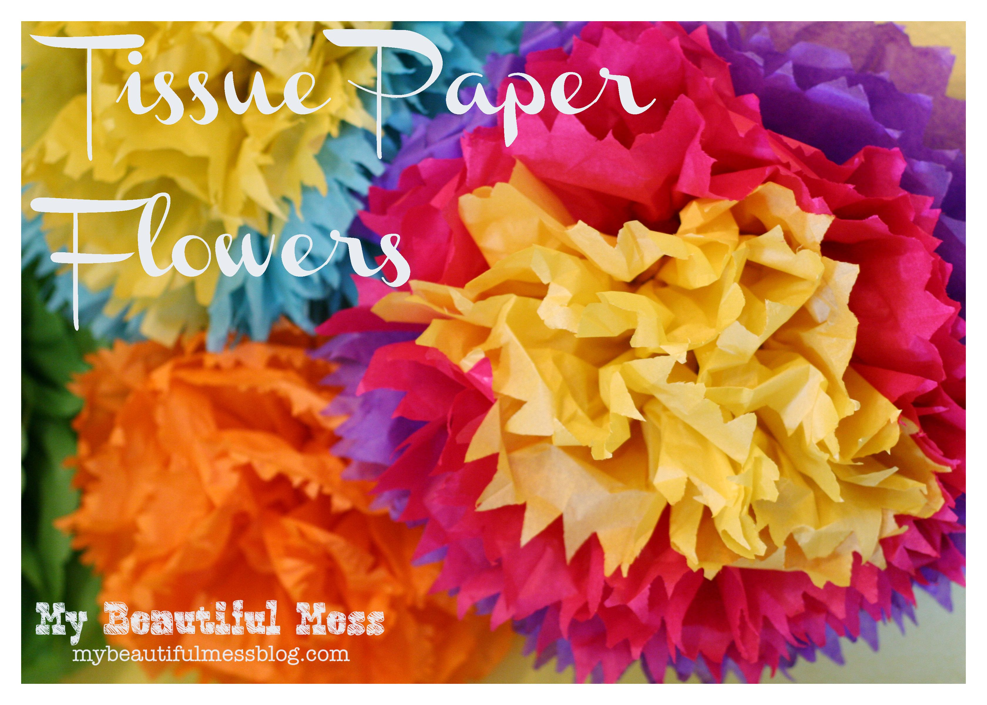 How To Make Mexican Tissue Paper Flowers Adriane Baby