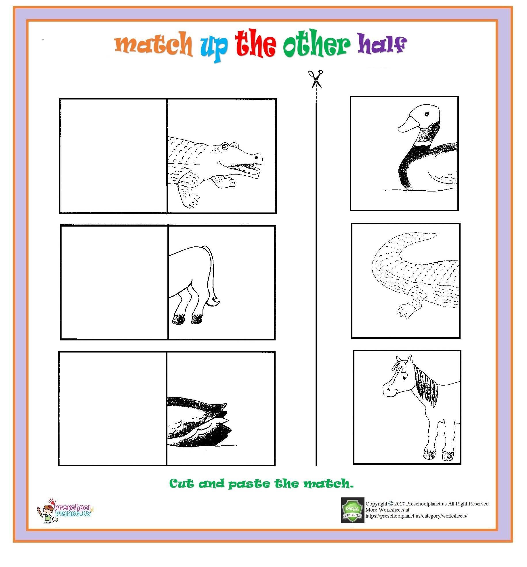 Match Up Other Half Worksheet