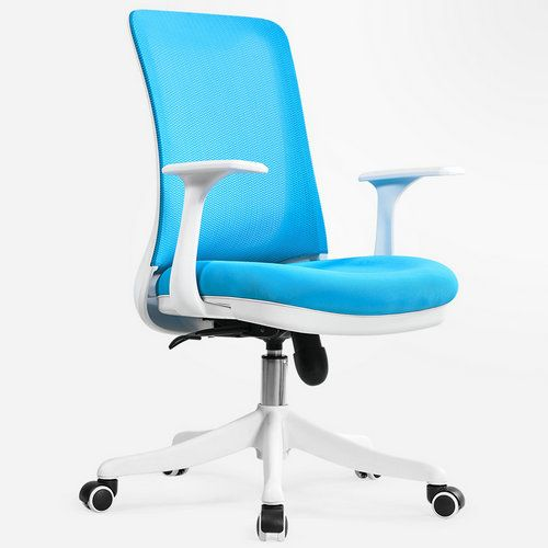 Fine Professional Staff Computer Office Desk Mid Back Task Chair Pabps2019 Chair Design Images Pabps2019Com