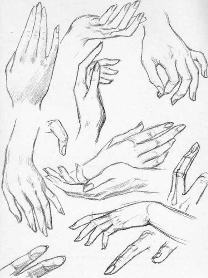 Plate The Female Hand Drawing The Head And Hands Hand Drawing Reference Hand Reference How To Draw Hands