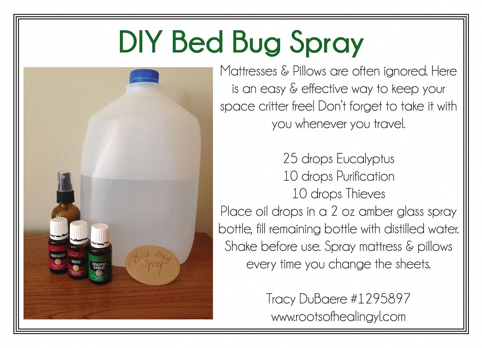 DIY Bed Bug Spray with Essential Oils pestcontrolservices