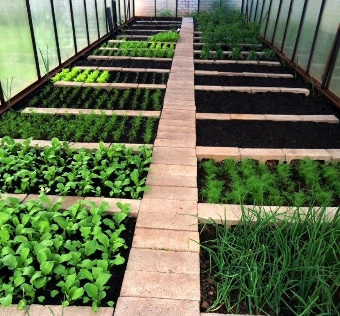 DIY garden beds: 43 interesting ideas for country design