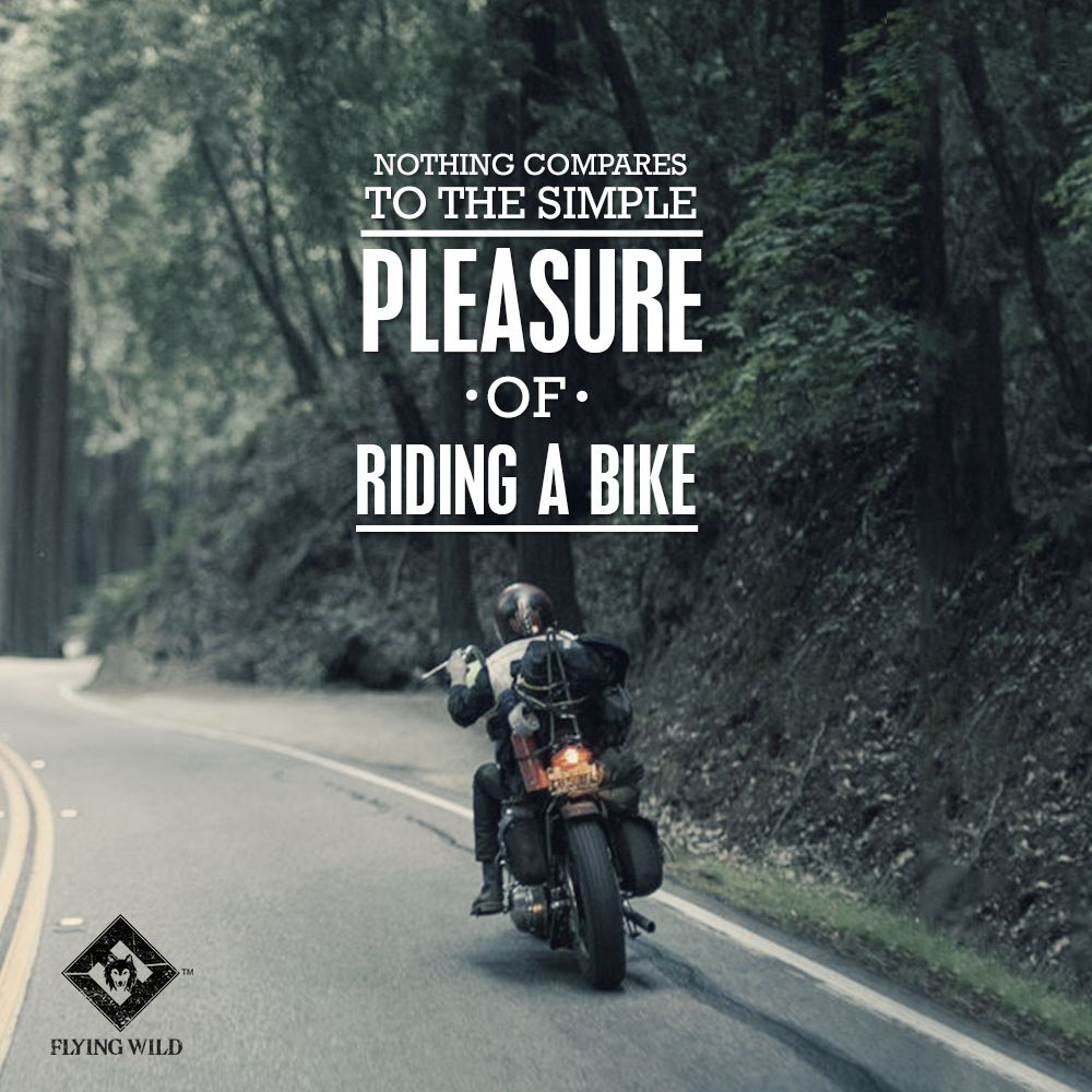 Pin by Flying Wild on Biker's Quotes Bike quotes, Rider