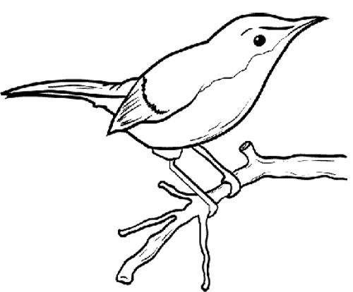 Little Bird Sitting On A Tree Branch Coloring Page