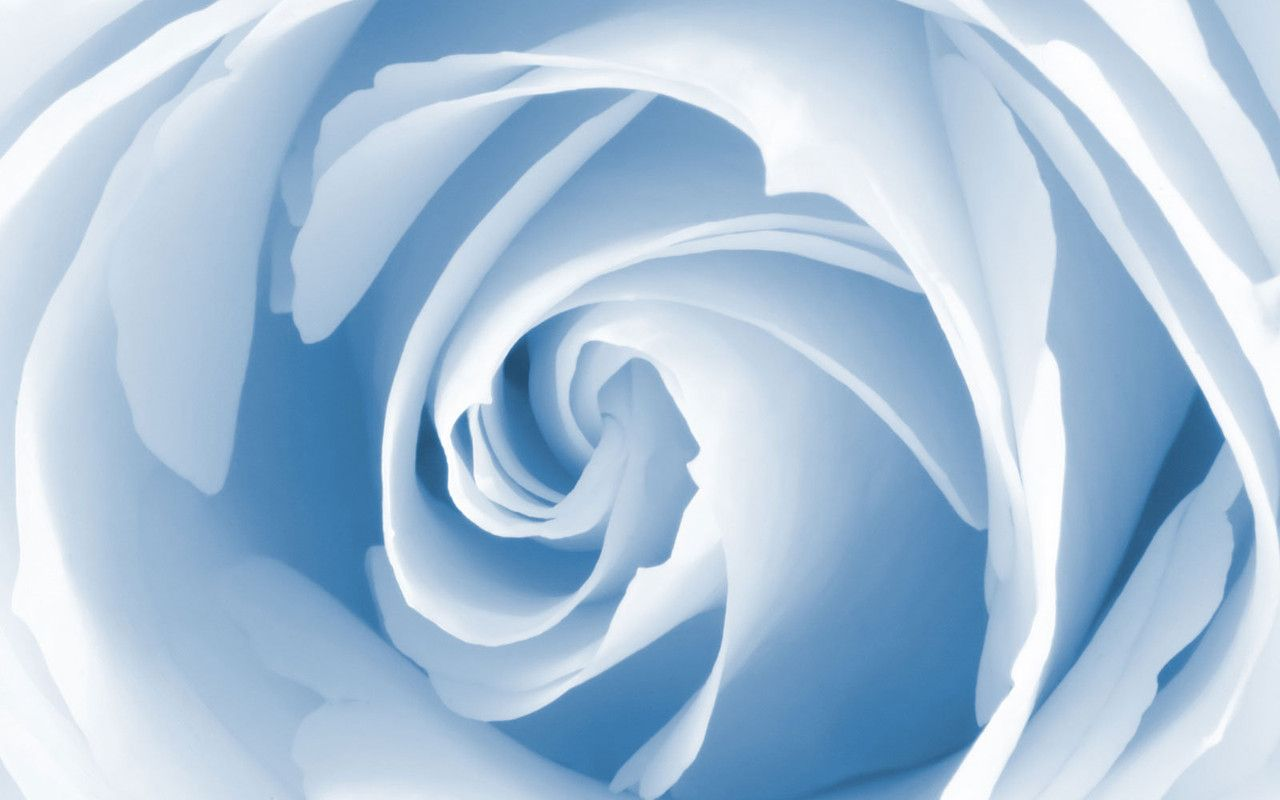 http://desktopwallpaperspacer.com/pics/pic-17581-1280x800.jpg