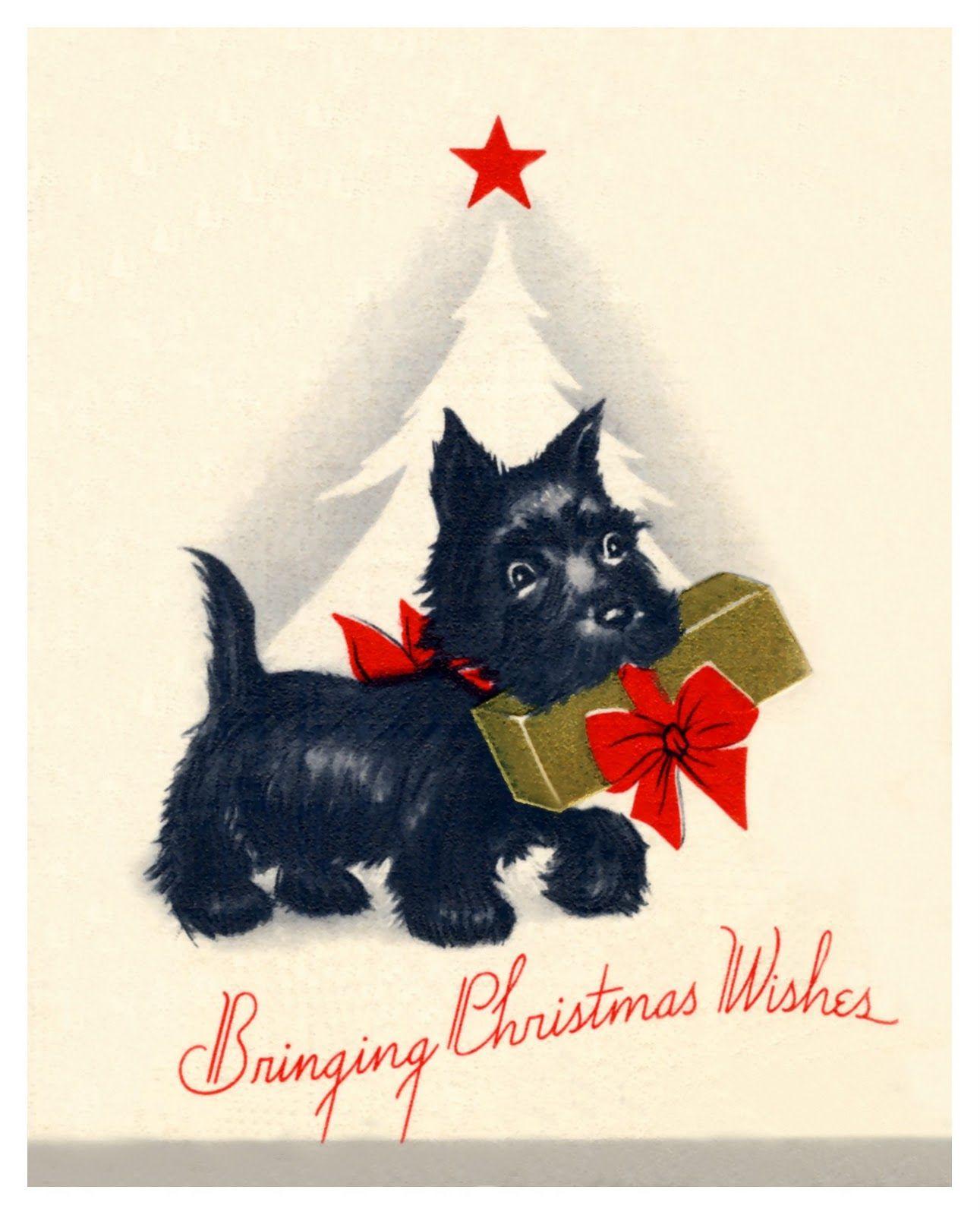 scottish christmas card vintage | Vintage Scottie Christmas Card | Scottish Terriers