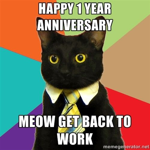 Happy 1 Year Anniversary Meow Get Back To Work Business Cat Business Cat Meme Funny Cat Memes