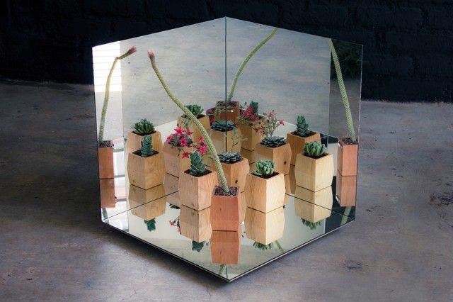 urban mirror gardening #7   by: salmiana