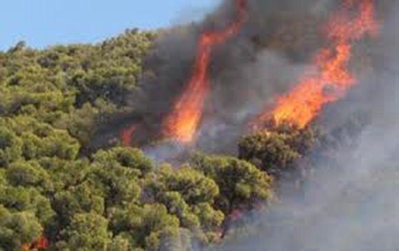 Πυρκαγιά σε δασική έκταση στην περιοχή Λιρά Μονεμβασιάς Λακωνίας